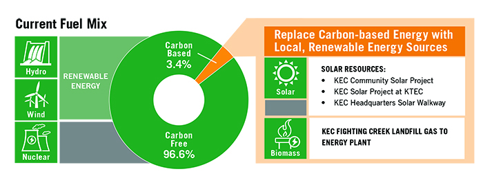renewable energy rate infographic